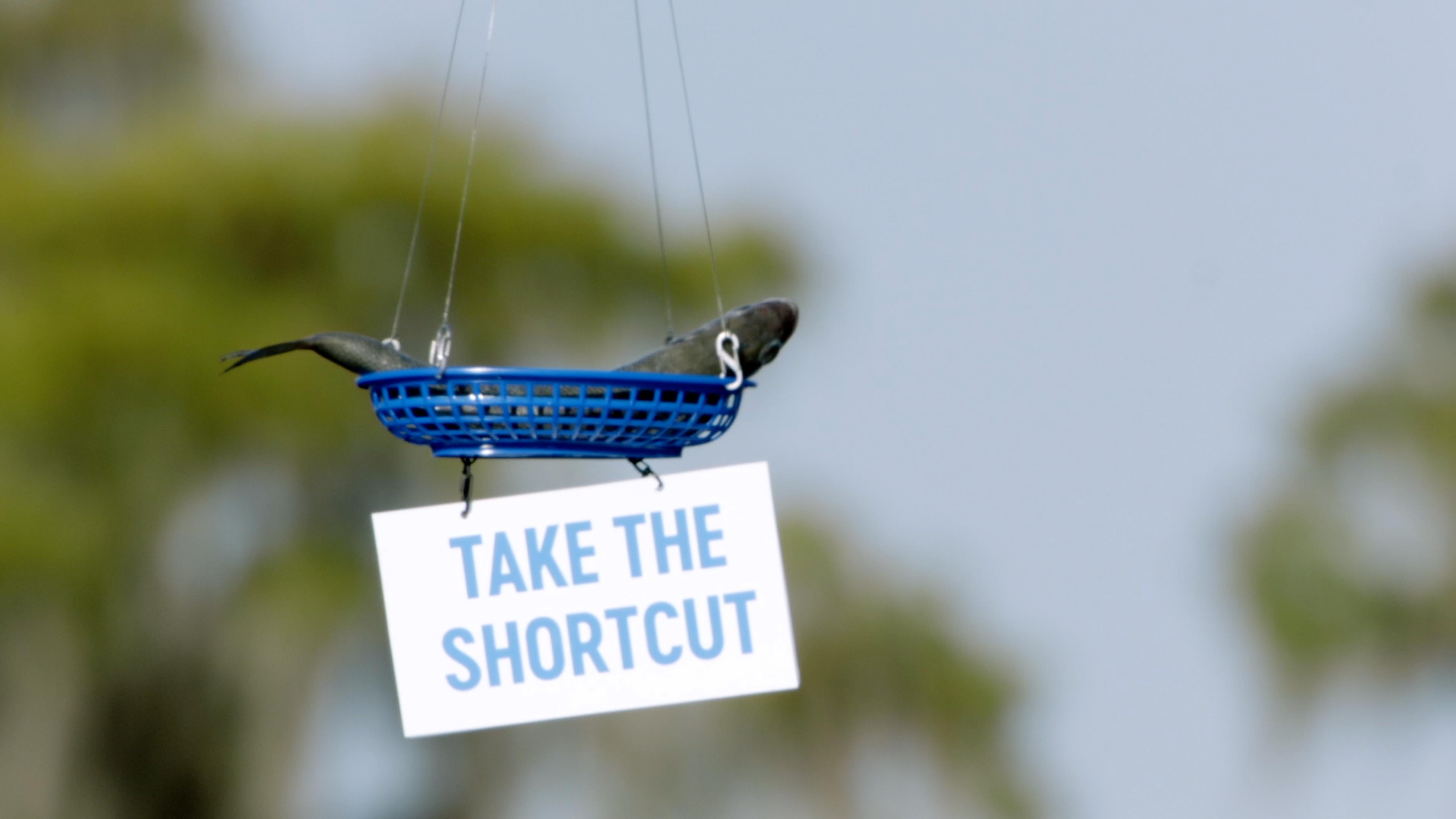 setapp-dronestunt1